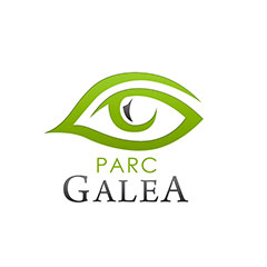 creation de logo et brochure parc galea